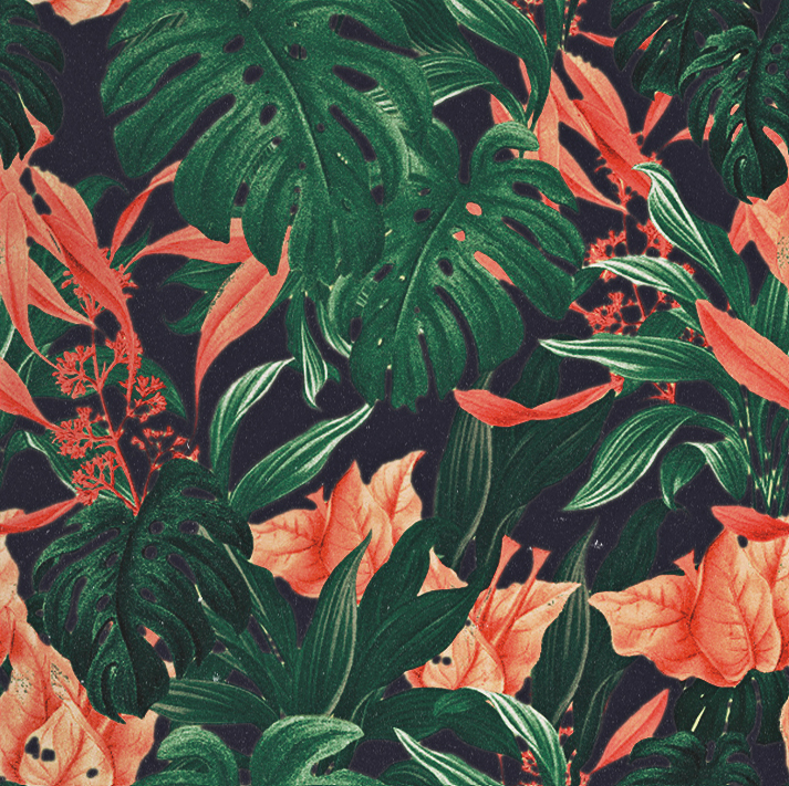3d Desktop Live Wallpaper Free Floral Pattern On Behance