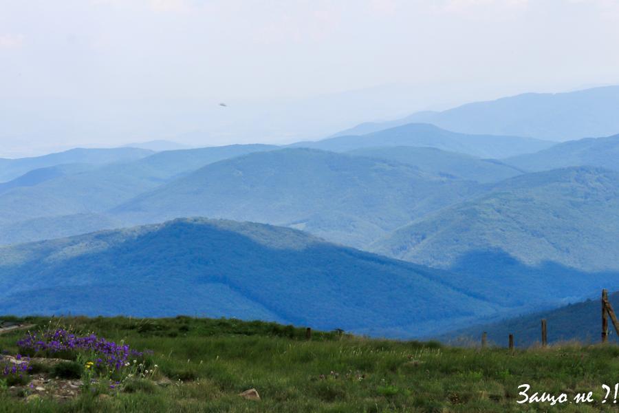 връх Чумерна