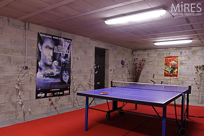 Carrelage Sol Salon Table De Ping Pong. C0134 | Mires Paris