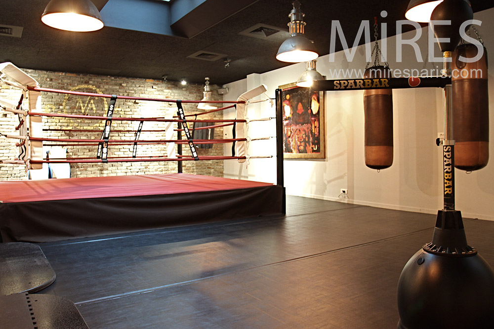 Salon Deco Paris 2016 Salle De Boxe Moderne. C1400 | Mires Paris