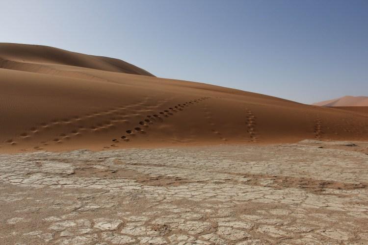 Namibia landscape-3