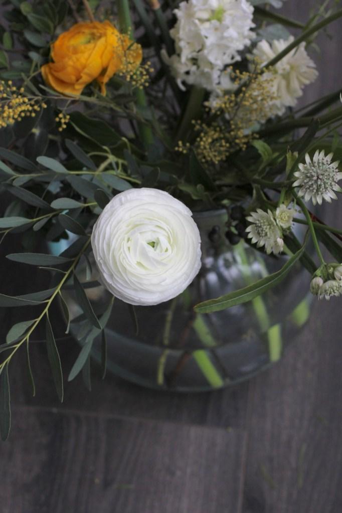 Ranunculus #2 - 2
