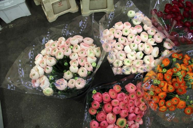 flower market - 11