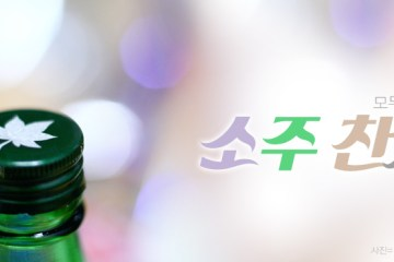 soju you are love