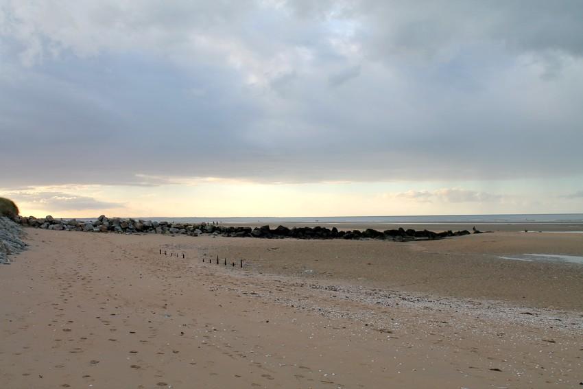 Entre les dunes 14