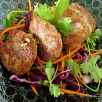 Asian chicken patties with Asian slaw