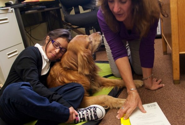 Angela Platero works to read and relax in the presence of the dog.