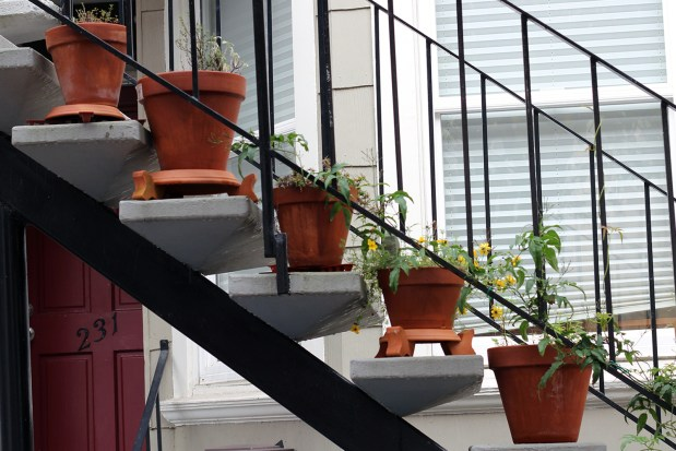 Pots lined up on a staircase.