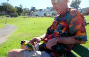 John, a San Francisco local, pets his pet parrot named Tuesday on Sunday in Dolores Park. Photo by Dorothy Atkins.