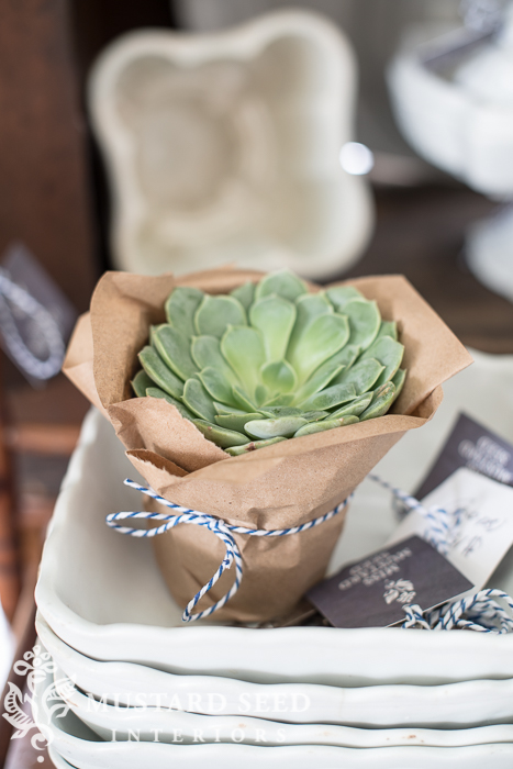 Unique way to display succulents from Miss Mustard Seed  ||  Friday Favorites at www.andersonandgrant.com