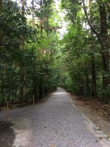 3外宮の道