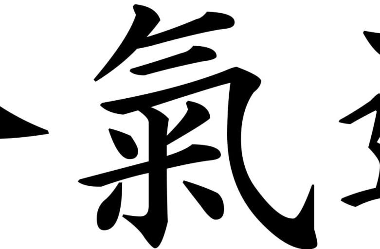 Aikido: the Way of Harmonious Spirit