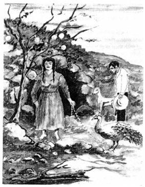 La Piedra de Aserrí y la Bruja Zárate