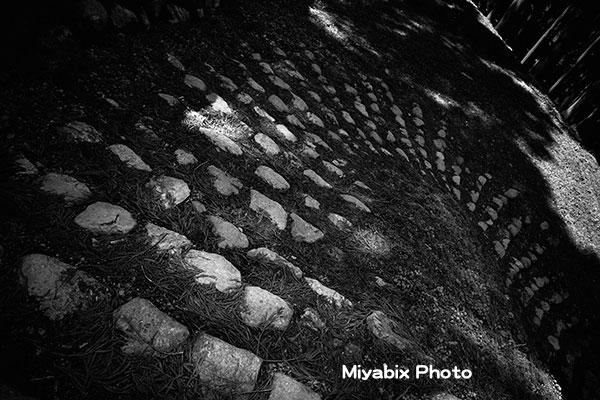 城跡,石段,城壁