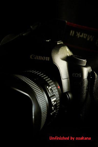 EOS,Canon,5D,MarkⅡ,2,一眼レフ,フルサイズ
