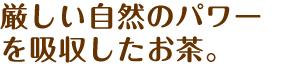 power_tea_h2