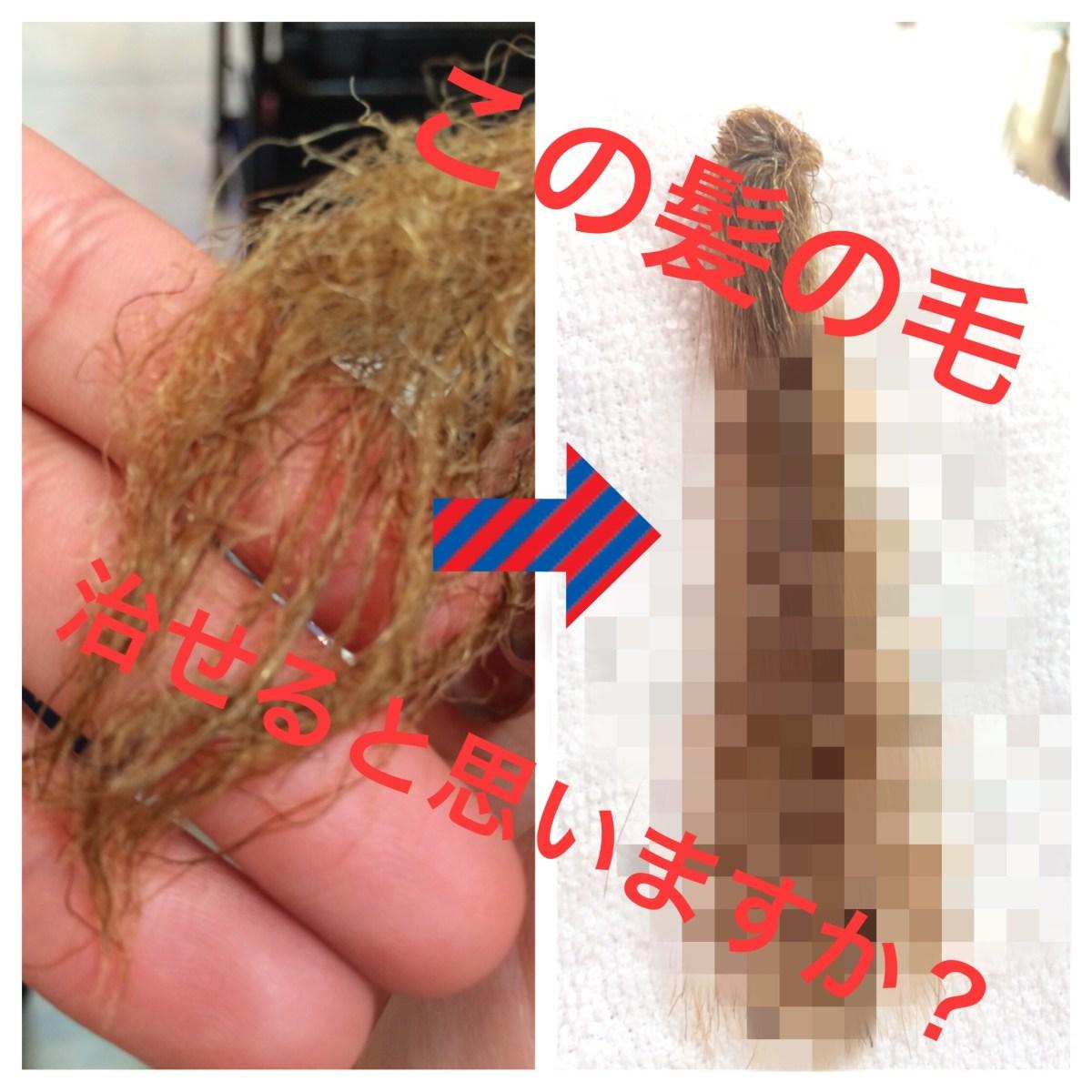 チリチリのハイダメージ毛をなおす!【パーマ液に2時間ほど漬けっぱなしの髪を元どおりにする!】