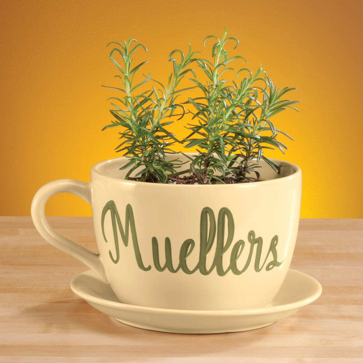 Large Tea Cup Planter Personalized Teacup Planter