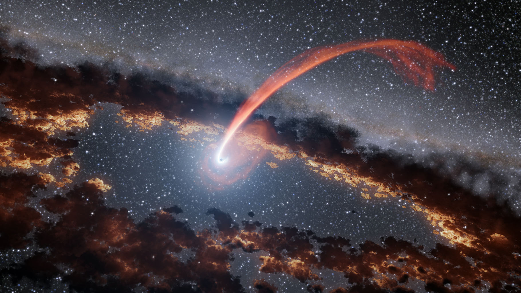 Stellar Black Hole Light Echoes Reveal Supermassive Black Holes Eating Stars