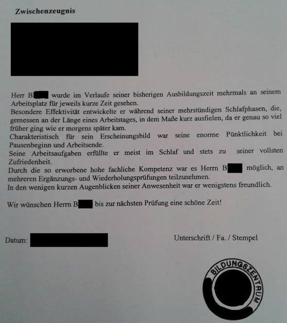 Reference Letter Samples From An Employees Manager When German Honesty Meets A Lazy Employee = Worst