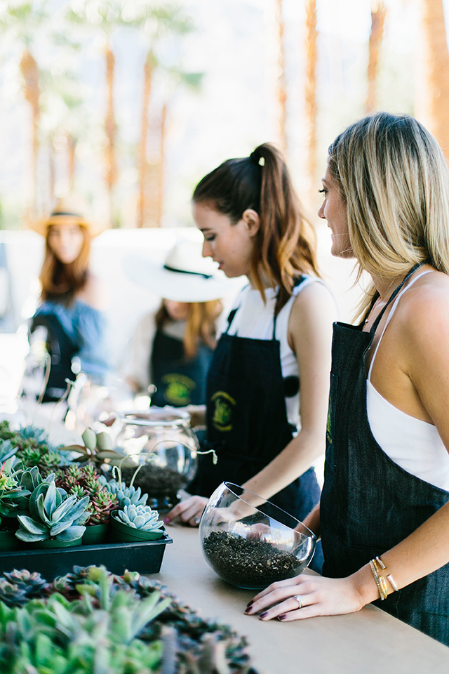 making diy terrariums with succulents M Loves M