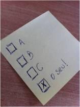 voto_pt