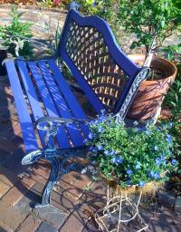 Garden BluesSorta. | Who's Your Granny?