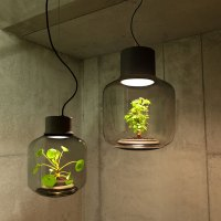 Self Sustaining Glass Planter