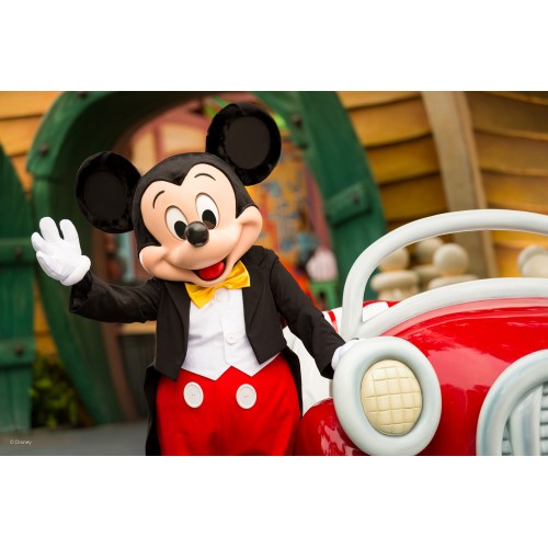Medium Crop Of Picture Of Mickey Mouse