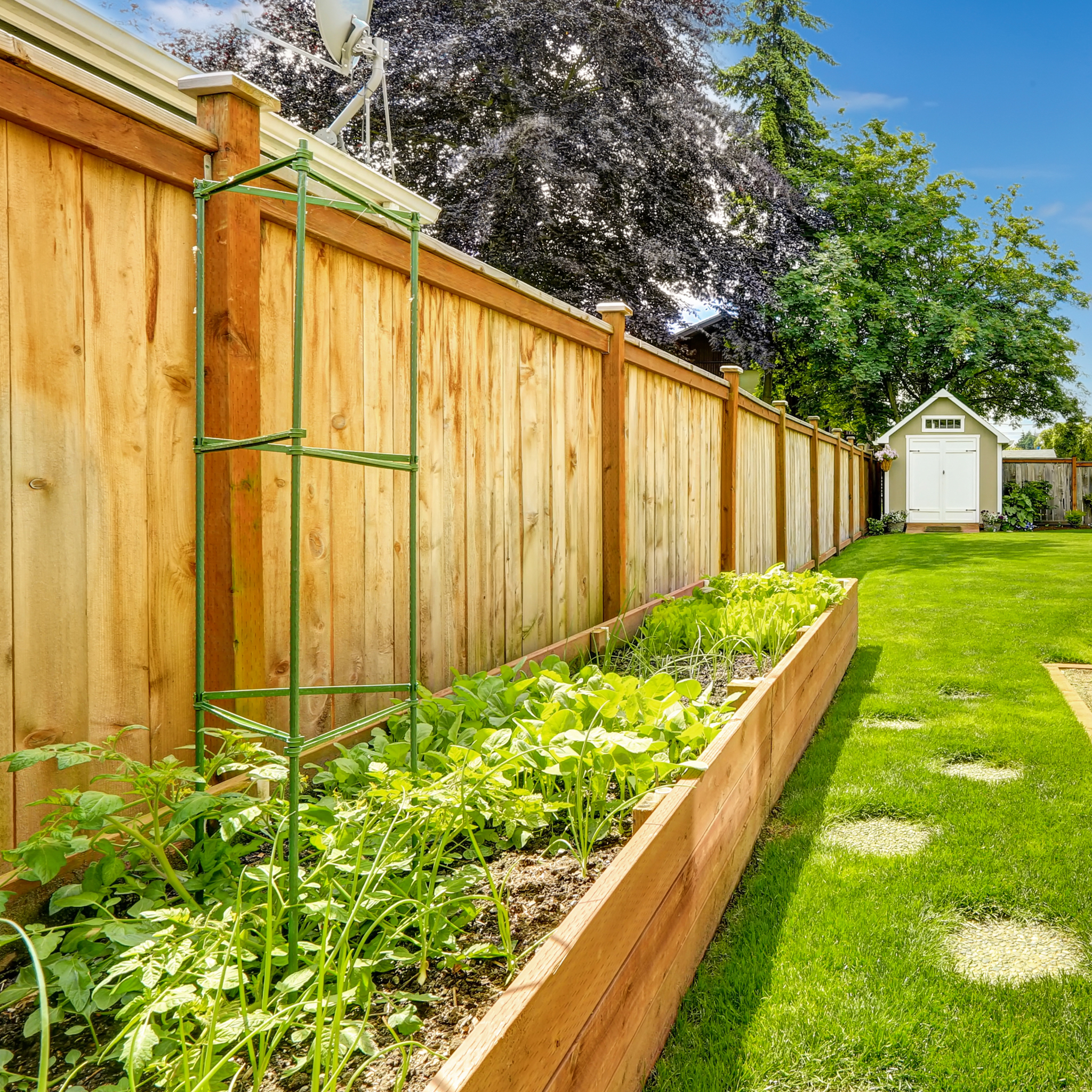 Upgrade Your Backyard Living Space With Fresh Fencing Business Wire