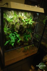 Terrarium plug and play 90/50/120
