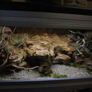Fond de terrarium desertique - Decor fond terrarium desertique ...