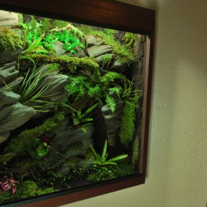 Terrarium plug and play 70/50/70