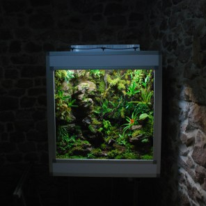 Terrarium plug and play 120/60/100