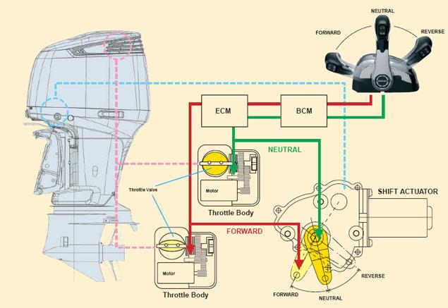 Suzuki Df300 Wiring Diagram   Wiring Diagram