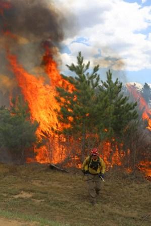 green-valley-fire-burnout-2013