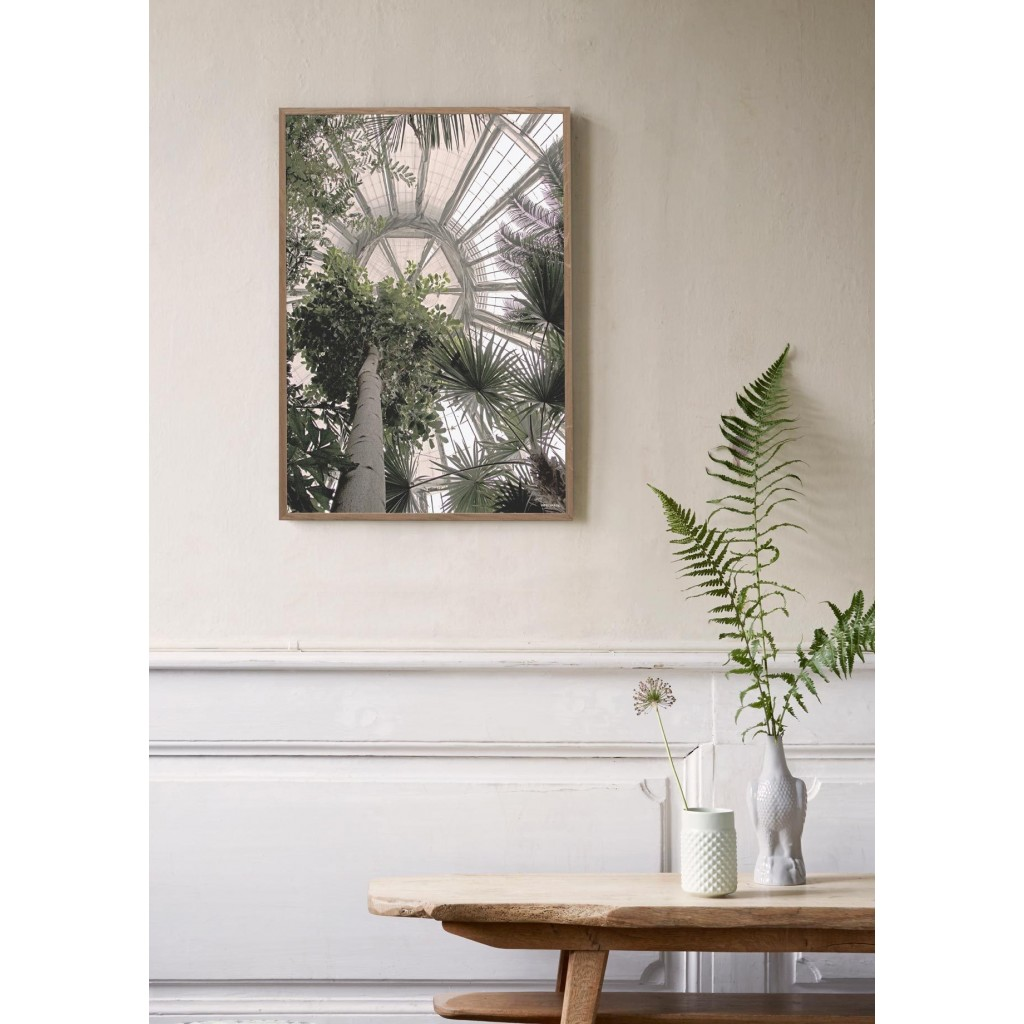 50x70 Poster Poster 50x70 Palm House By Vissevasse