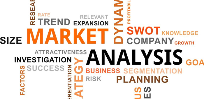 Food Truck Business Plans Market Analysis Section