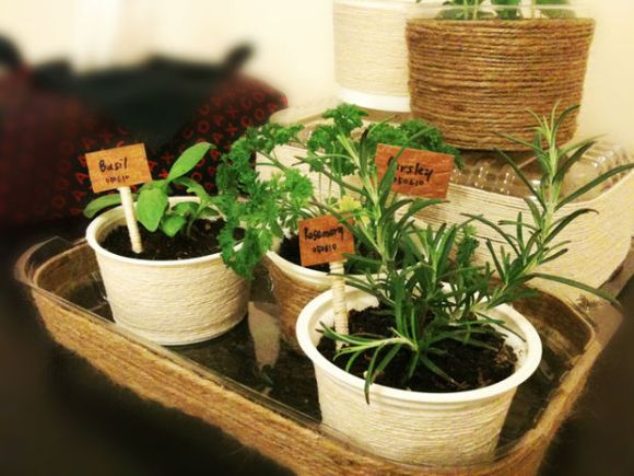 indoor gardening in a manufactured home