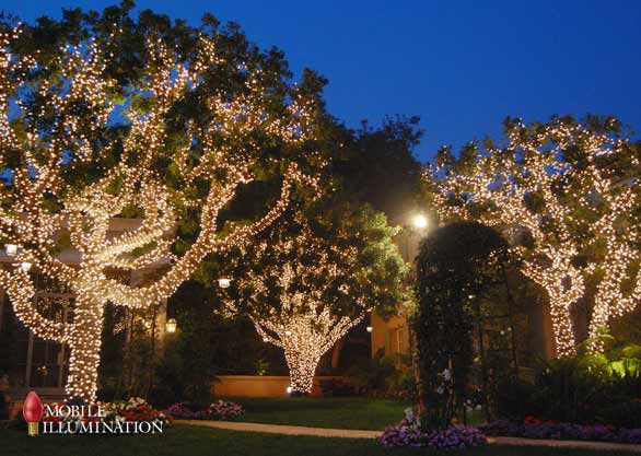 Tree Wrapping and Tree Lighting - Mobile Illumination