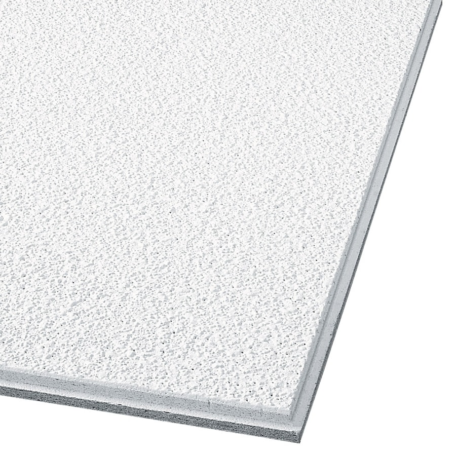 Armstrong Ceilings Common 24 In X 24 In Actual 23 735