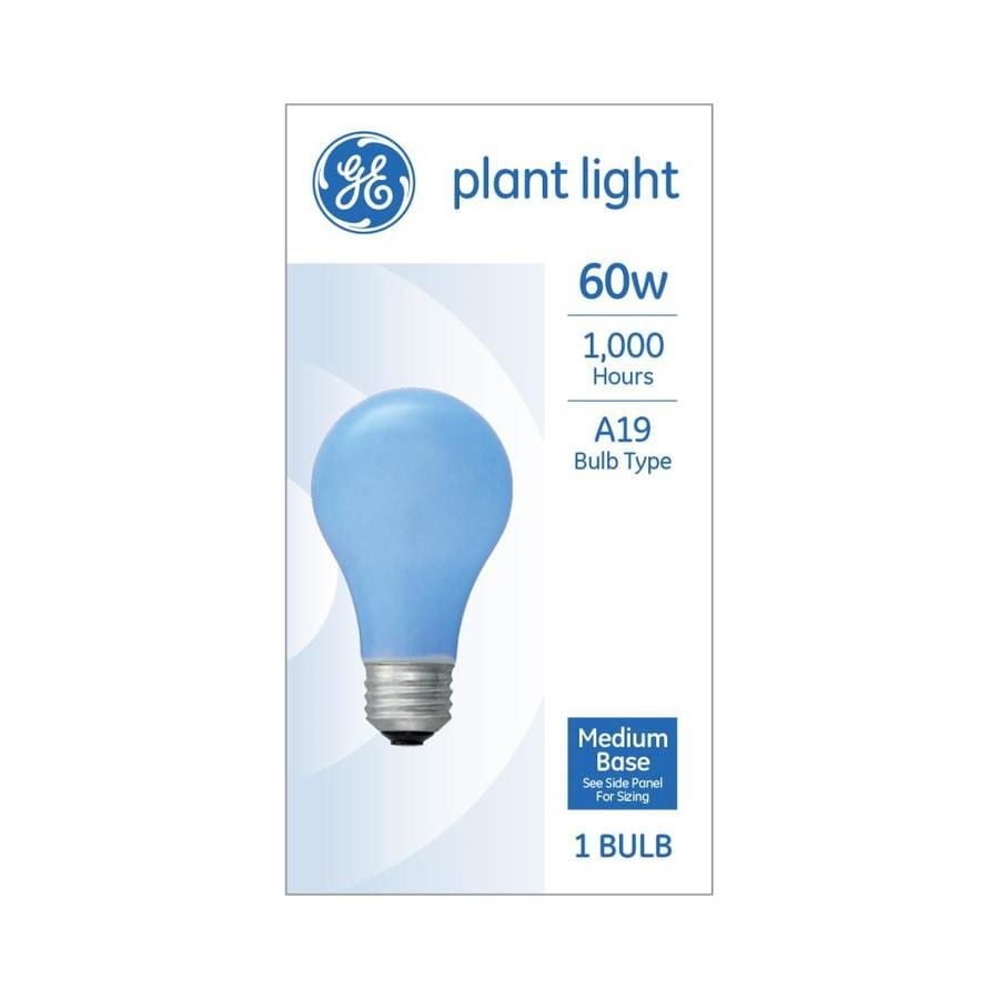 Lamp Bulb Ge 60 Watt A19 Grow Incandescent Light Bulb At Lowes