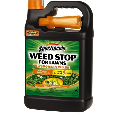 Medium Of Spectracide Weed And Grass Killer