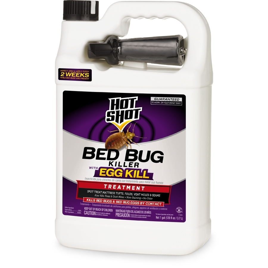 Sprays For Bed Bugs Hot Shot 1 Gallon Bed Bug Killer At Lowes