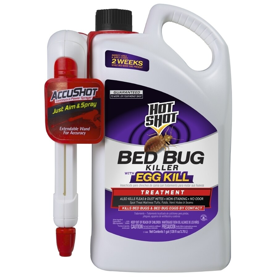Sprays For Bed Bugs Hot Shot Accushot Sprayer 128 Fl Oz Bed Bug Killer At Lowes