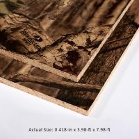 Shop Camo Panels Featuring Mossy Oak 7/16 CAT PS2-10 OSB ...