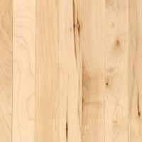 Shop allen + roth Maple Hardwood Flooring Sample (Country ...