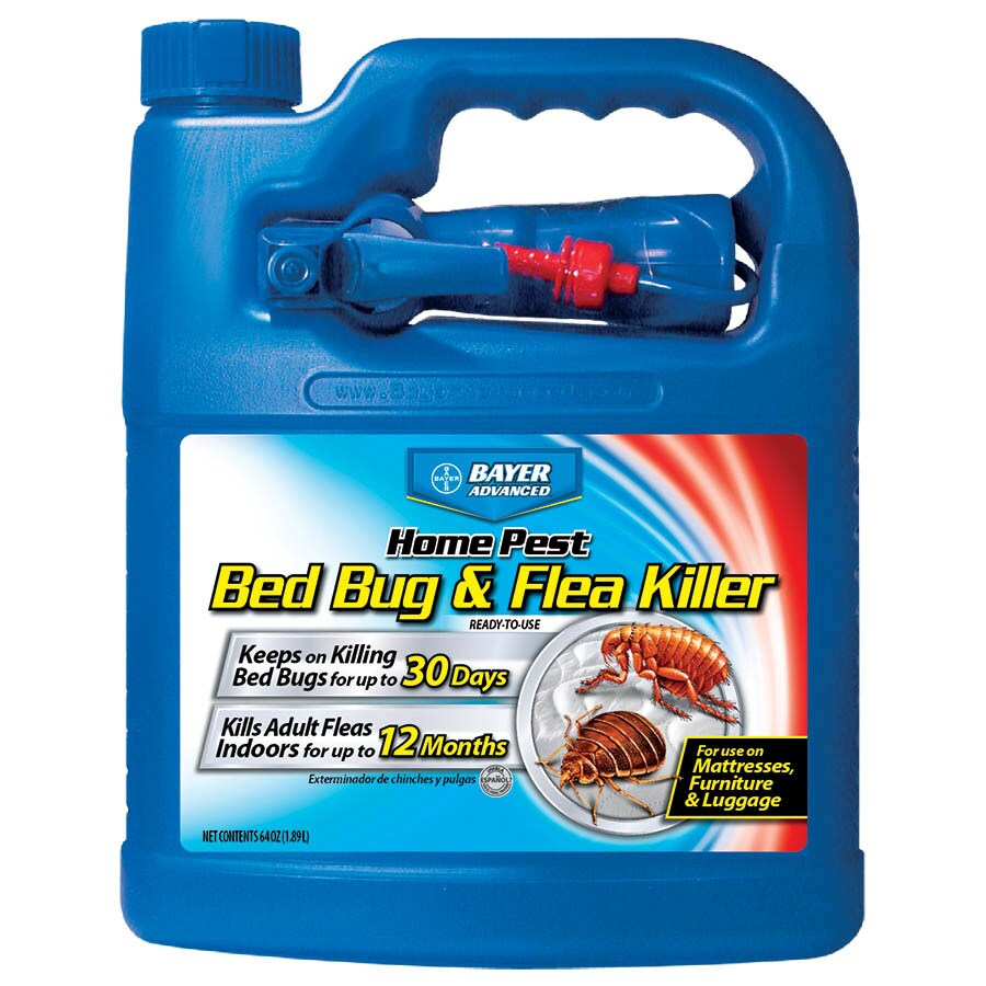 Sprays For Bed Bugs Bayer Advanced Bed Bug And Flea Killer 64 Fl Oz Insect Killer At