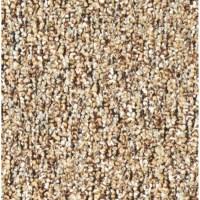 Shop Coronet Stock Carpet Almond Berber Indoor/Outdoor ...