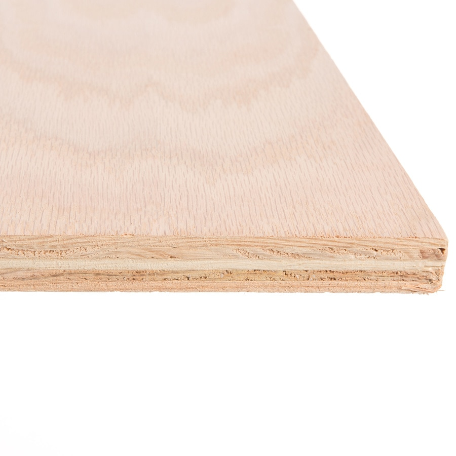 Oak Plywood Top Choice 3 4 In Hpva Oak Plywood Application As 4 X 8 At Lowes